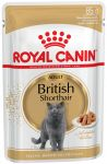 Пресервы Royal Canin British Shorthair (в соусе)